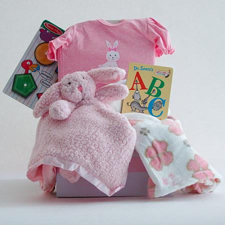 #120A Welcome Baby Girl Gift Basket