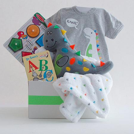#120B Welcome Baby Boy Gift Basket