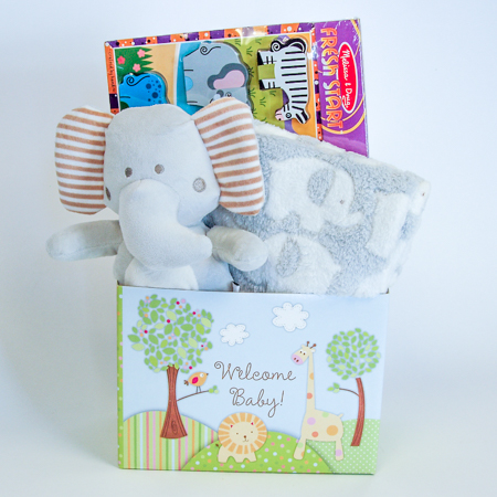 #125 Welcome Baby Gift Basket