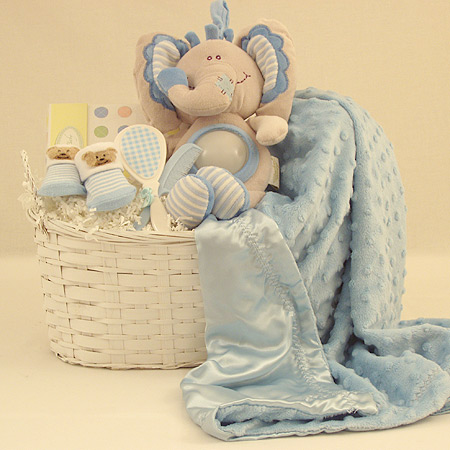 #133 Sweet Baby Boy Gift Basket